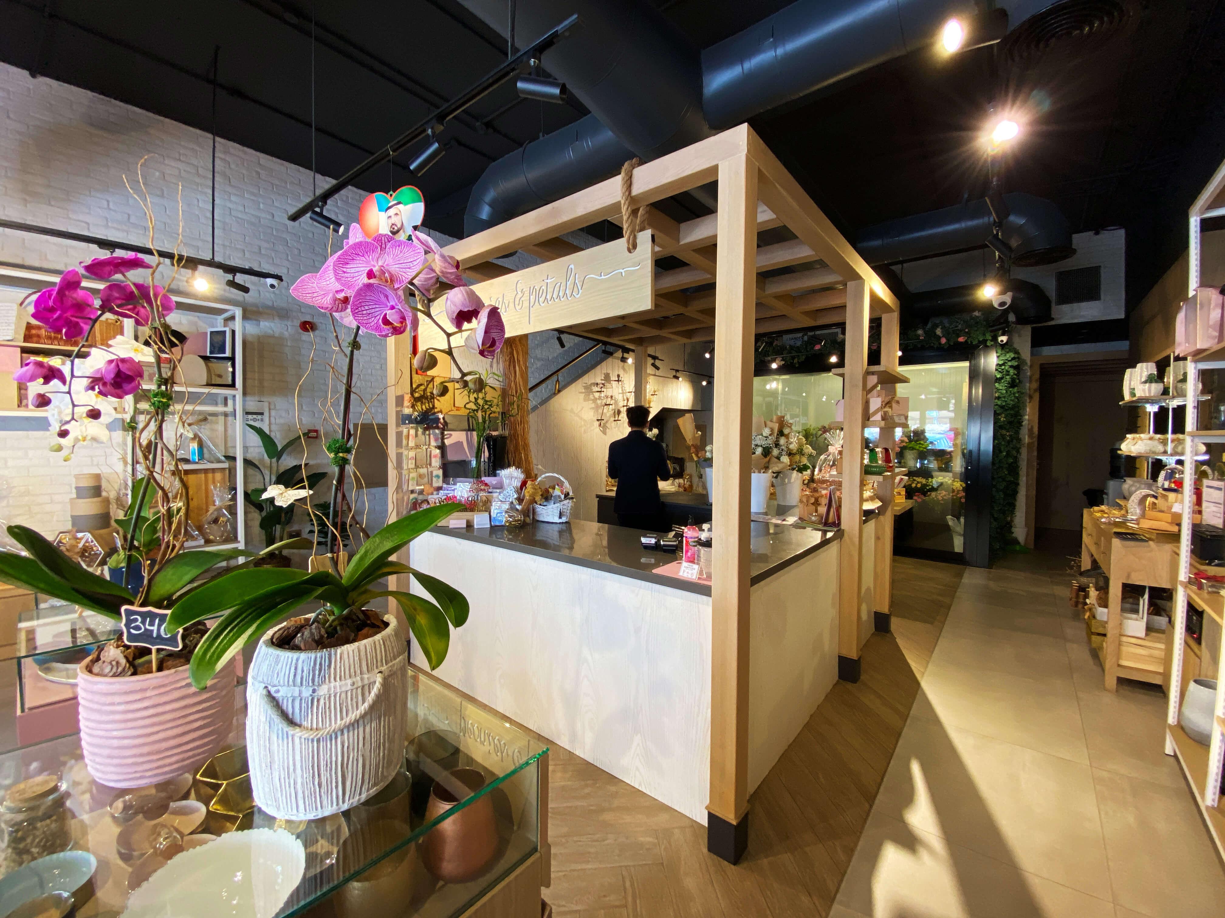 XESS! Interior Designs